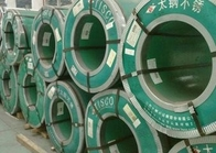 চীন Hot Dip Galvanized Steel Coils , Carbon Steel Galvanized Hot Rolled Steel Coil For Container Plate পরিবেশক
